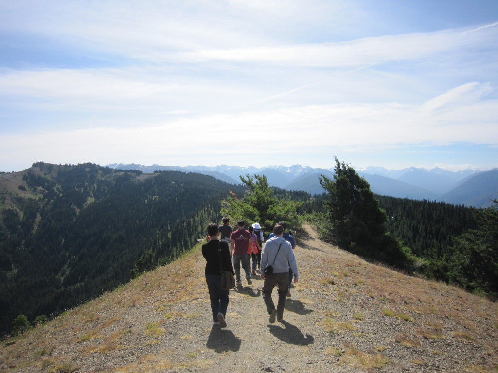 Trekking along Hurricane Ridge